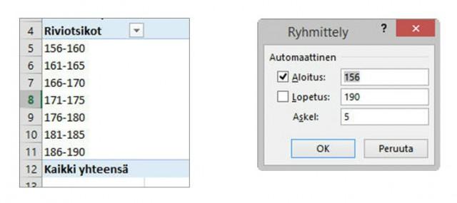 OutiLammi_Microsof_Office_pivottaulu2