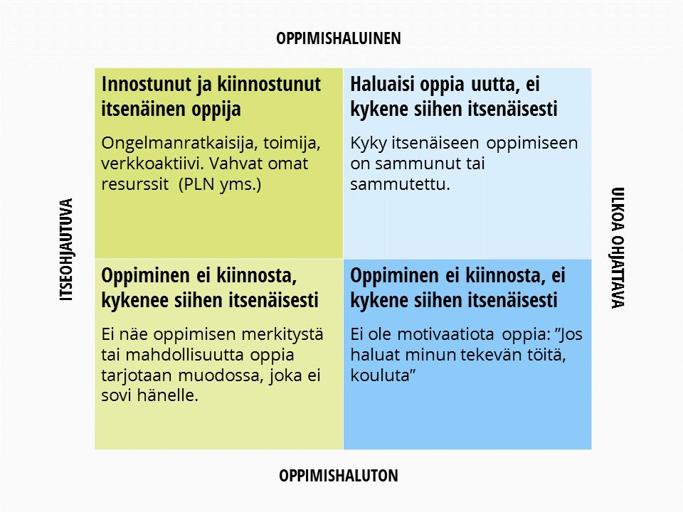 Outi_Lammi_oppijat_taulukko
